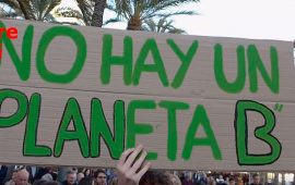 Fridays for future. Alicante
